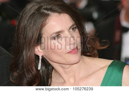 CANNES, FRANCE - MAY 21: Julia Ormond attend the 'Che' premiere at the Palais des Festivals during the 61st International Cannes Film Festival on May 21, 2008 in Cannes, France.