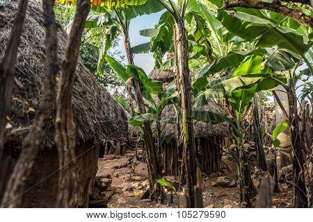Traditional Konso Village, Ethiopia