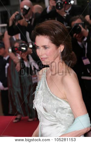 CANNES, FRANCE - MAY 13: Model Dayle Haddon attends the preview of 'Where the Truth lies', film by Atom Egoyan, at the Grand Theatre Lumiere on May 13, 2005 in Cannes, France