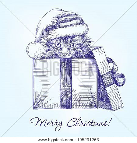 Christmas kitten in Santa stocking hat hand drawn vector llustration  sketch