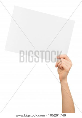 Humans left hand holding big white card