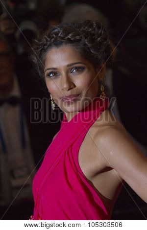 CANNES, FRANCE - MAY 15:  Freida Pinto attends 'The Great Gatsby' Premiere during the 66th Annual Cannes Film Festival at the Theatre Lumiere on May 15, 2013 in Cannes, France.