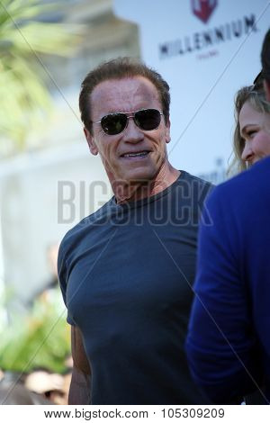 CANNES, FRANCE - MAY 18: Arnold Schwarzenegger  attends a photocall for 'The Expendables 3' at the Carlton Hotel on May 18, 2014 in Cannes, France.