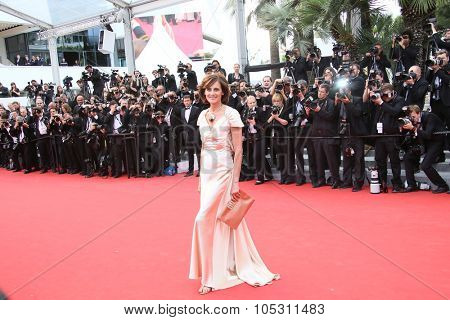 Ines de La Fressange attends the Premiere of 'Irrational Man' during the 68th annual Cannes Film Festival on May 15, 2015 in Cannes, France.