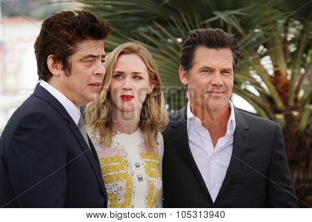 Actors Benicio Del Toro, Emily Blunt and Josh Brolin attend a photocall for 'Sicario' during the 68th annual Cannes Film Festival on May 19, 2015 in Cannes, France.