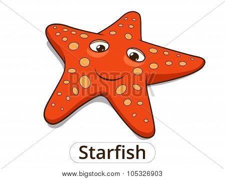Starfish sea fish cartoon illustration