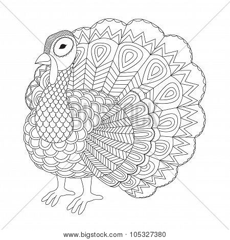 Turkey Coloring Book