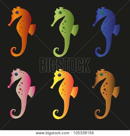 Various Color Seahorses Icons Set On Black Background Eps10