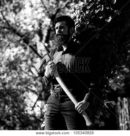 Male Logger In Forest