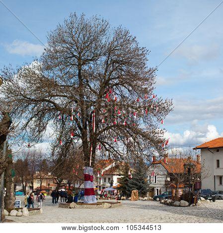 Many Bulgarian traditional custom spring sign Martenitsa on the tree in the center of Bansko, Bulgar