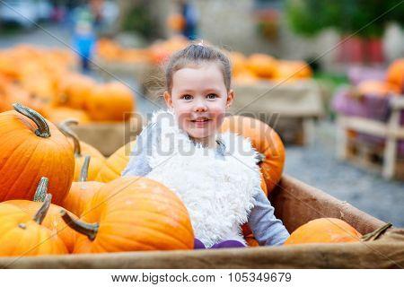 Little Kid Girl On Pumpkin Farm Celebrating Thanksgiving