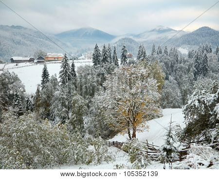 First snow in maountain village. Ukraine