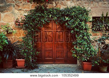 Retro wooden door outside old Italian house in a small town of Pienza, Italy. Plants decorations, ivy, vintage
