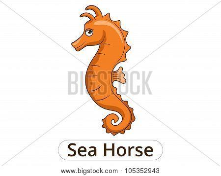 Sea horse underwater animal cartoon illustration