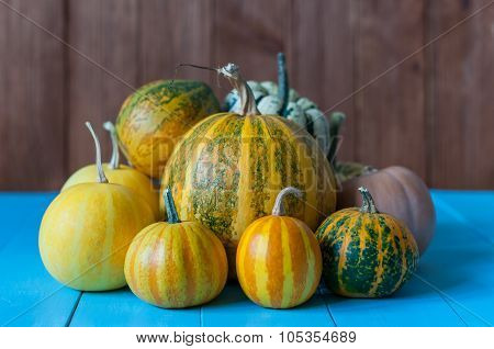 Pumpkins on rural blue wooden background. Autumn harvest, close-up