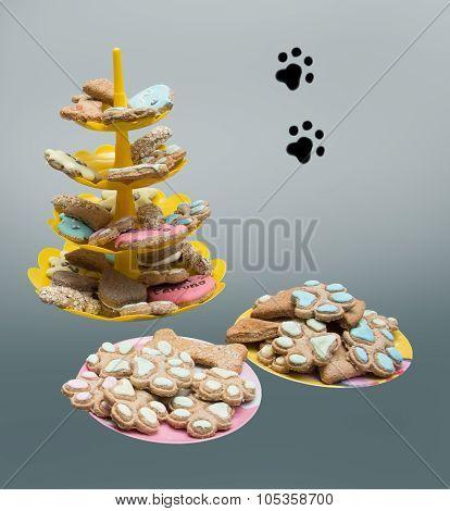 dog cat treat