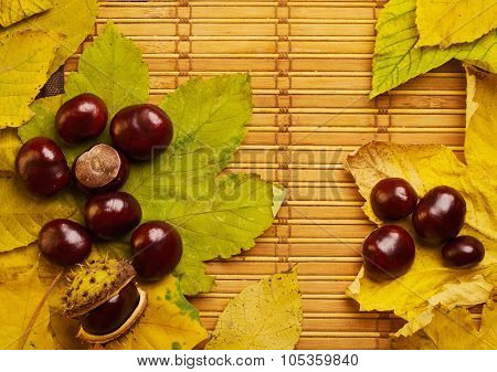 Rustic Background With Chestnuts And Maple Leaves