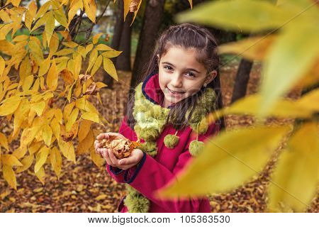 Adorable Teenage Girl In The Nature With Dry Leaves In Hands