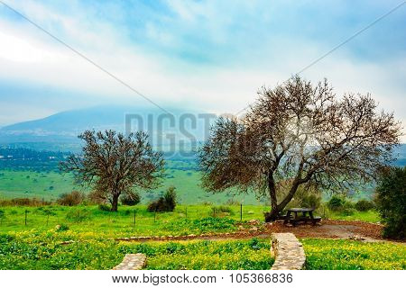 Landscape Near Beit Keshet