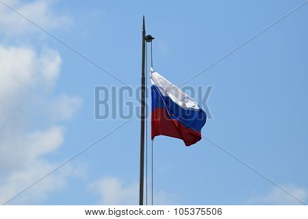 The Fluttering Flag Of Russia