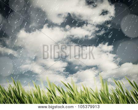 Beauty autumnal rain