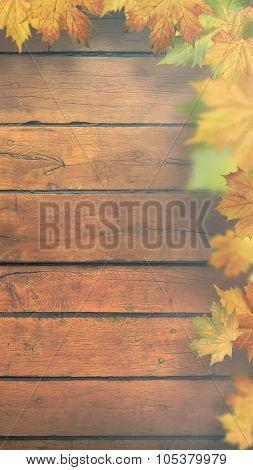 Autumnal leaves over old wooden desk