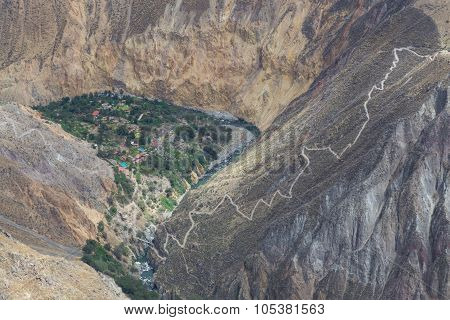 Oasis Sangalle in the Colca Canyon