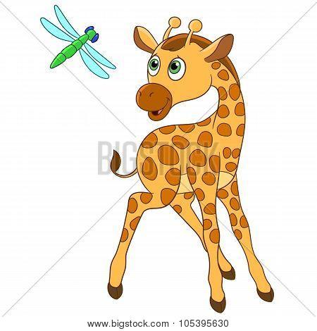 Giraffe And Dragonfly