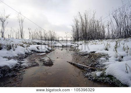 First snow and unfrozen stream .