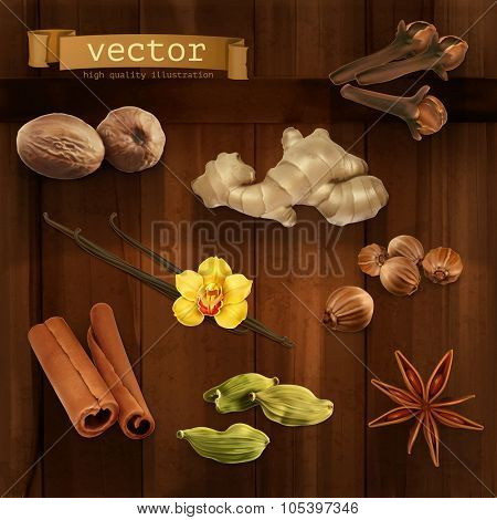 Spices, vector icons set
