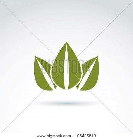 Green Crown Created From Three Leaves, Vector Ecology Coronet. Eco Symbol On Planetary Resources The