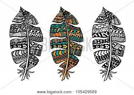 Zentangle Stylized Feathers