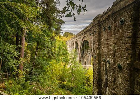 Lambley Viaduct In Woodlands