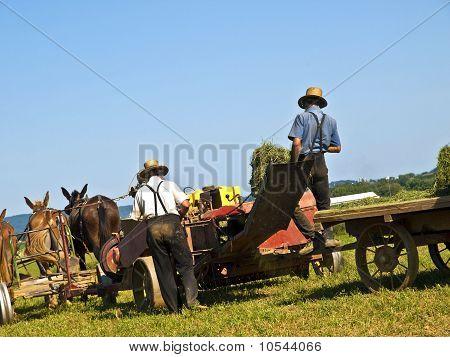Agricultores Amish