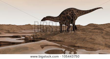 dicraeosaurus walking in desert