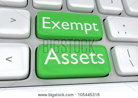 Exempt Assets Concept