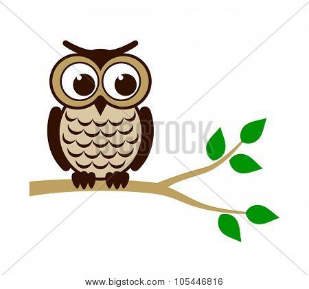 Funny owl sitting on branch. Vector illustration