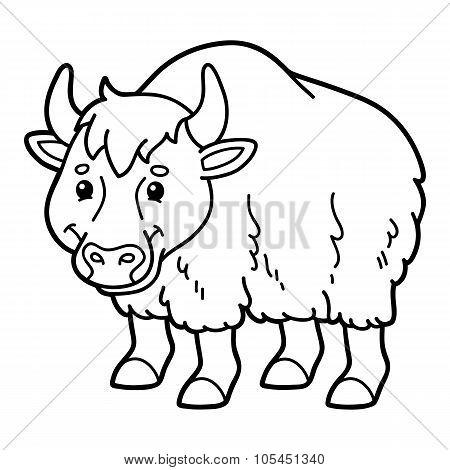 Cute yak.
