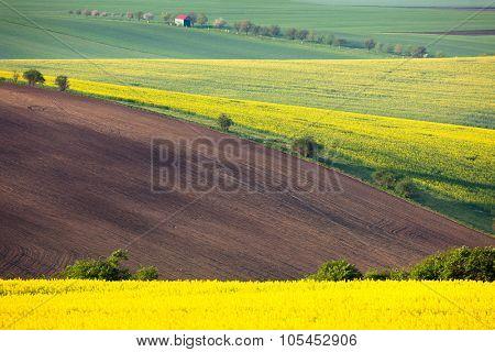 Idyllic colorful fields landscape - countryside hills background