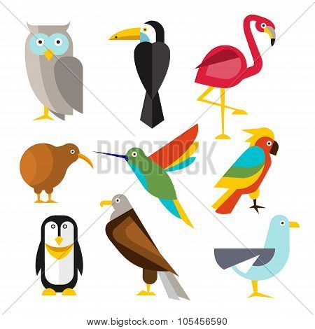 Set of Wild Arctic, Forest and Tropical Birds in Flat Style