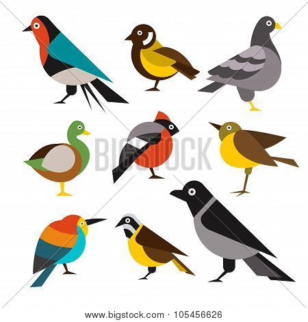 Set of Wild Birds in Flat Style. Vector Illustration