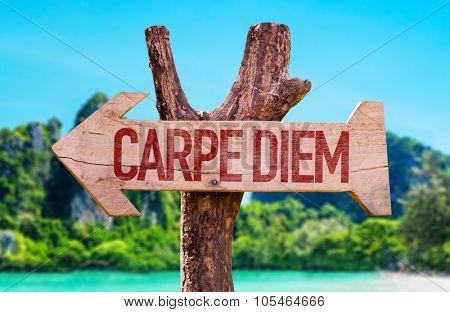 Carpe Diem arrow with beach background