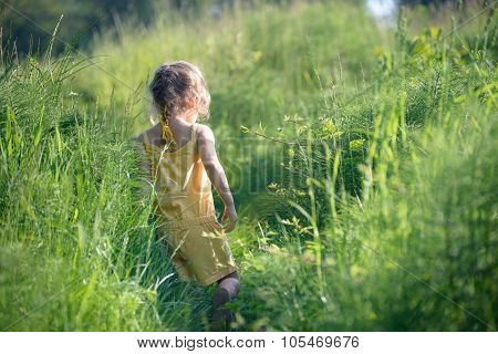 Small Girl In Tall Green Grass