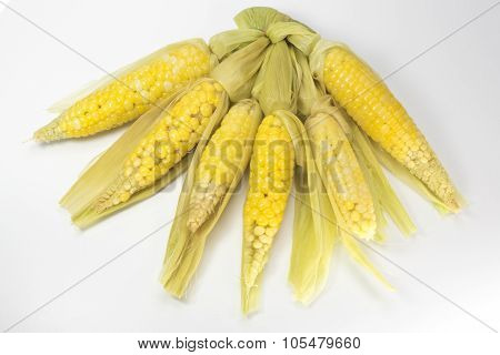 little sweet corn
