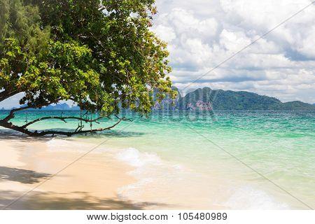 Beautiful tropical white sand beach at Trang andaman sea Thailand