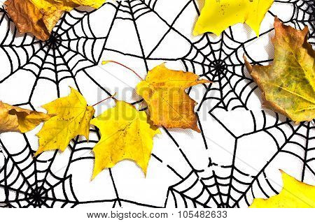 Autumn Leaves And Black Spiderweb As Halloween Background