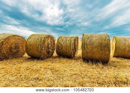Hay Bales Agriculture Scenery