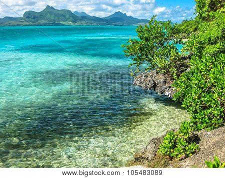 Aigrettes island Mauritius