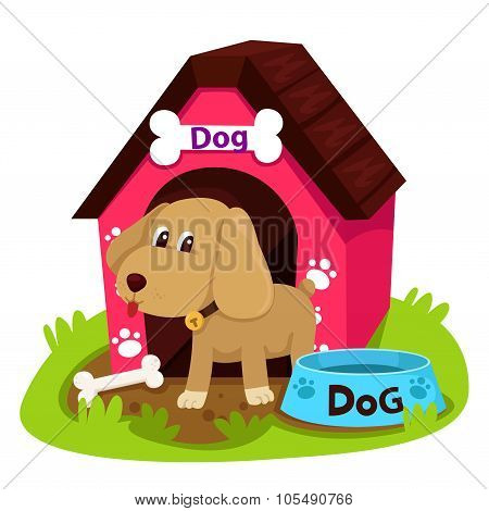 Illustration dog and home