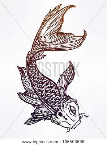 Elegant Koi carp fish illustration.